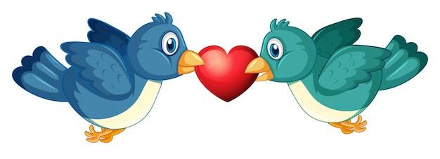Dois pássaros azuis e coração