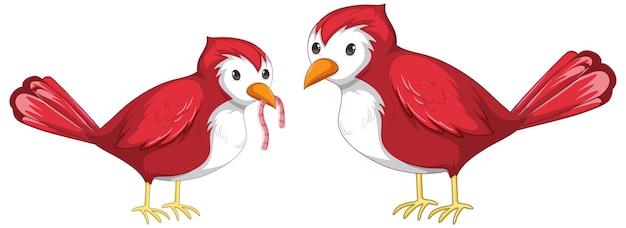 Dois pássaros vermelhos pegando minhoca em estilo cartoon isolado