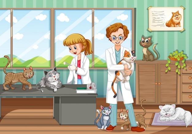 Dois veterinários curando animais no hospital