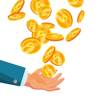 Dólar caindo para mão de negócios