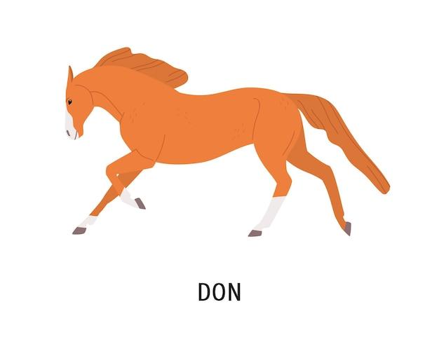 Don ilustração plana de cavalo. belo pedigree eqüino, hoss de raça russa