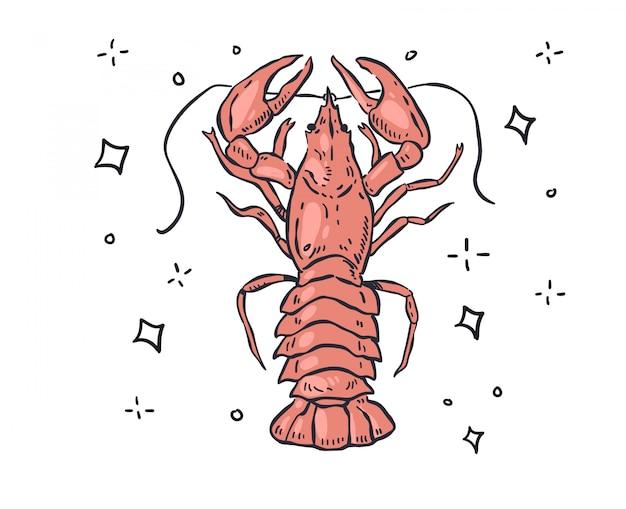 Doodle de lagosta. ilustração de lagosta