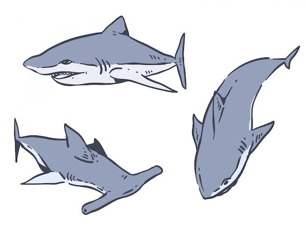 Doodle de mão desenhada tubarão