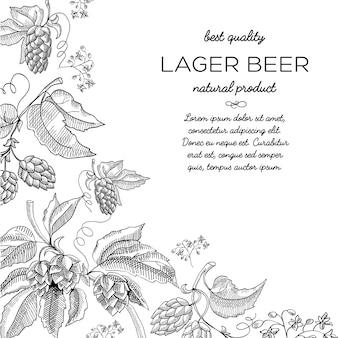 Doodle de ornamento de vinheta de lúpulo de moldura de canto com texto sobre cerveja lager de produto natural