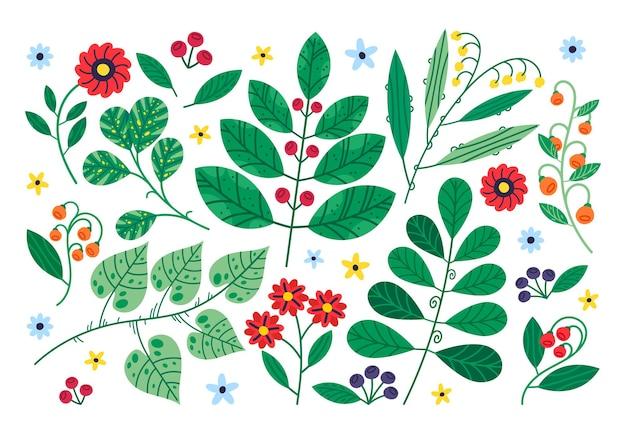 Doodle desenhado à mão, folhas de flores e plantas de bagas