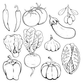 Doodle ou mão desenhada coleção de legumes