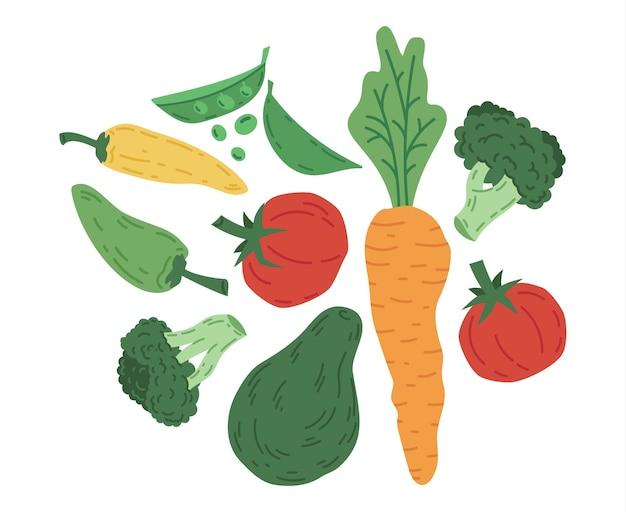 Doodle vegetais cenoura abacate, tomate e brócolis conjunto de vetores de alimentos orgânicos vegetarianos