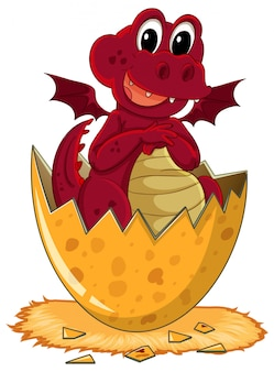 Dragão vermelho ovo de incubação