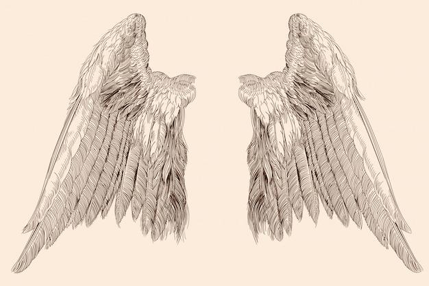 Duas asas espalhadas de um anjo feito de penas isoladas em um fundo bege.