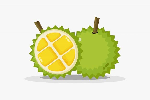 Durian e fatias de durian