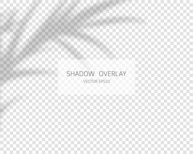 Efeito de sobreposição de sombra. sombras naturais ilustração isolada.