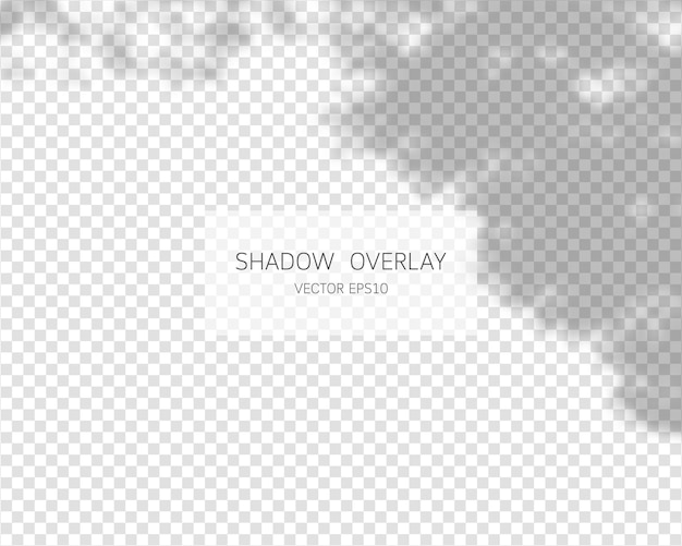 Efeito de sobreposição de sombra sombras naturais isoladas em fundo transparente