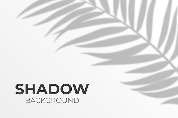 Efeito de sobreposição de sombra transparente