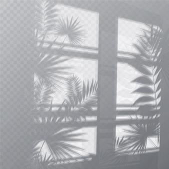 Efeito de sobreposição de sombras transparentes com plantas e janela