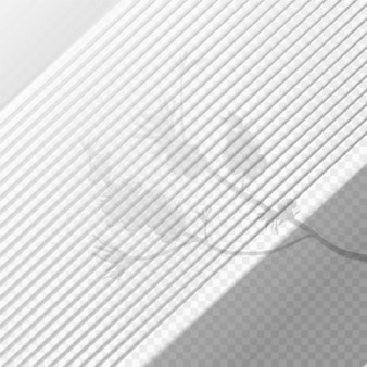 Efeito de sobreposição de sombras transparentes com ramificação