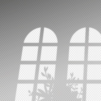 Efeito de sobreposição de sombras transparentes e arbusto de folhas