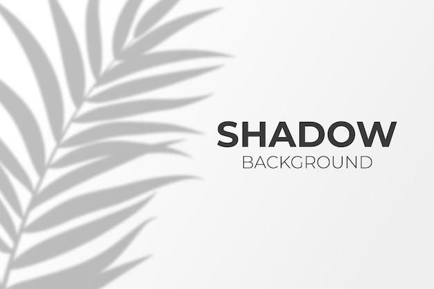 Efeito de sombra transparente das folhas