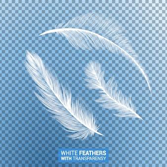 Efeito transparente realista de penas macias brancas