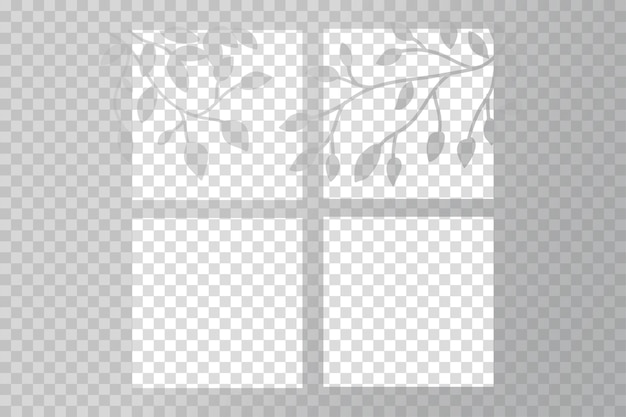 Efeitos de sobreposição de sombra transparente com galhos de árvores
