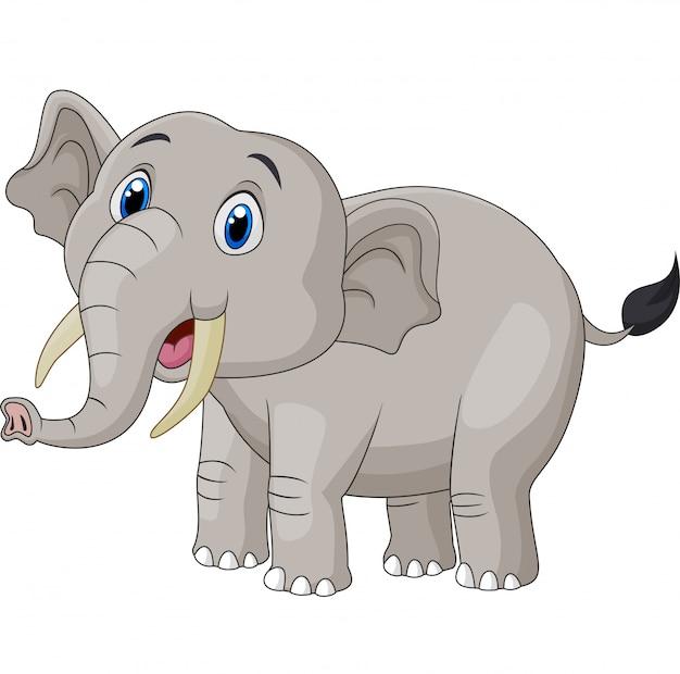 Elefante bonito dos desenhos animados sobre fundo branco