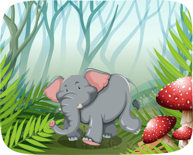 Elefante correndo na natureza