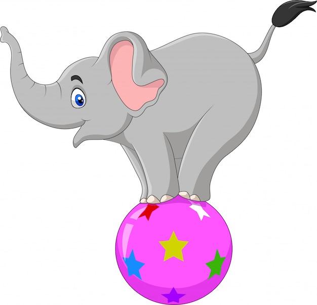 Elefante de circo dos desenhos animados em pé sobre uma bola
