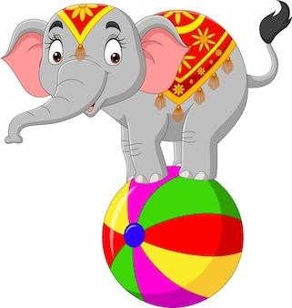 Elefante de circo engraçado se equilibrando na bola