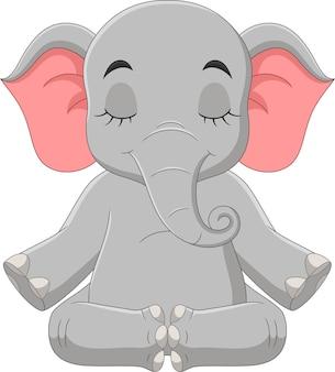Elefante de desenho animado sentado e meditando