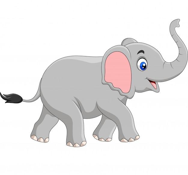 Elefante dos desenhos animados isolado