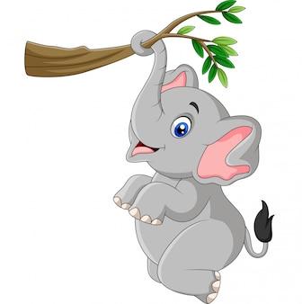 Elefante engraçado dos desenhos animados, jogando em um galho de árvore