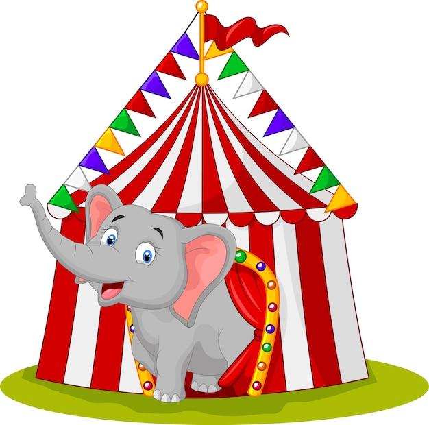 Elefante feliz na tenda do circo