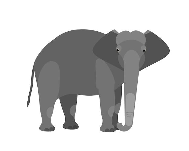 Elefante fofo adorável engraçado isolado no fundo branco. grande animal selvagem mamífero herbívoro inteligente africano e asiático. fauna de savana. ilustração vetorial colorida em estilo cartoon plana.