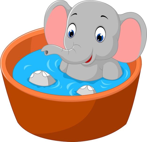 Elefante fofo