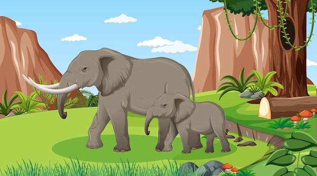 Elefante mãe e bebê em uma floresta ou cenário de floresta tropical com muitas árvores