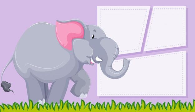 Elefante no fundo roxo