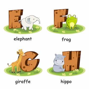 Elefante sapo girafa hipopótamo alfabeto madeira animais