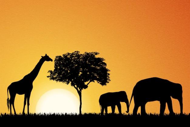 Elefantes e girafa na áfrica