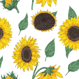 Elegante floral padrão sem emenda com peças de girassol. pano de fundo com lindas flores e folhas