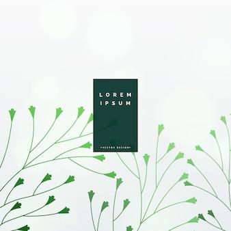 Elegante fundo de vetor de folhas verdes