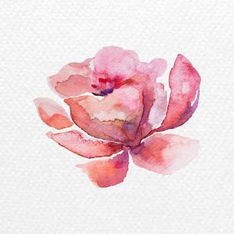 Elemento de desenho de flores em aquarela