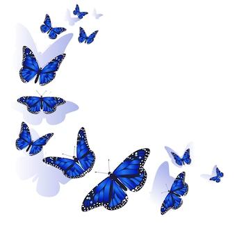Elemento de design. moldura feita de borboletas.