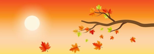 Elemento de folhas de bordo de outono