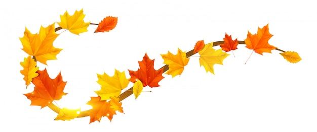 Elemento de fronteira outono com folhas coloridas