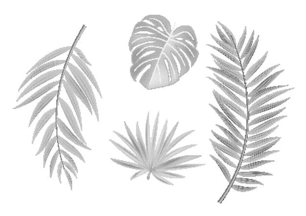 Elemento vibrante pontilhado de folhas de palmeira em meios-tons naturais