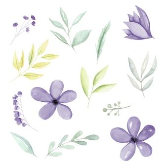 Elementos botânicos em aquarela roxos