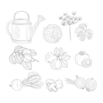 Elementos clipart produto fazenda esboço realista desenhado mão