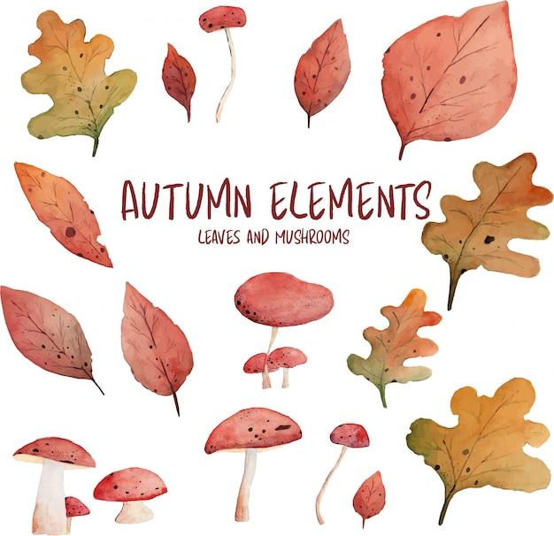 Elementos de aquarela de folhas e cogumelos de outono