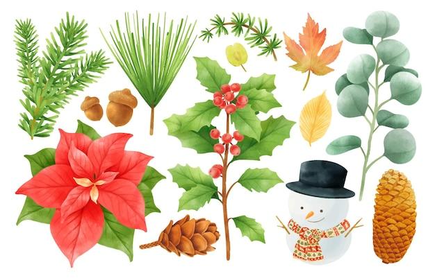 Elementos de decoração de plantas de natal ilustrações estilos de aquarela