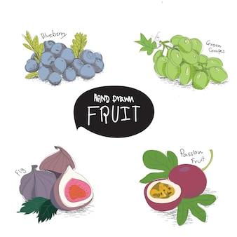 Elementos de design de frutas mão desenhada