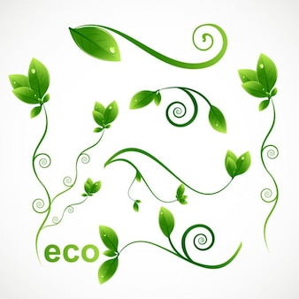 Elementos de design ecologia